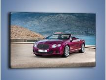 Obraz na płótnie – Bentley Continental Speed GT – jednoczęściowy prostokątny poziomy TM187