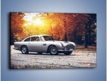 Obraz na płótnie – Aston Martin DB5 – jednoczęściowy prostokątny poziomy TM208