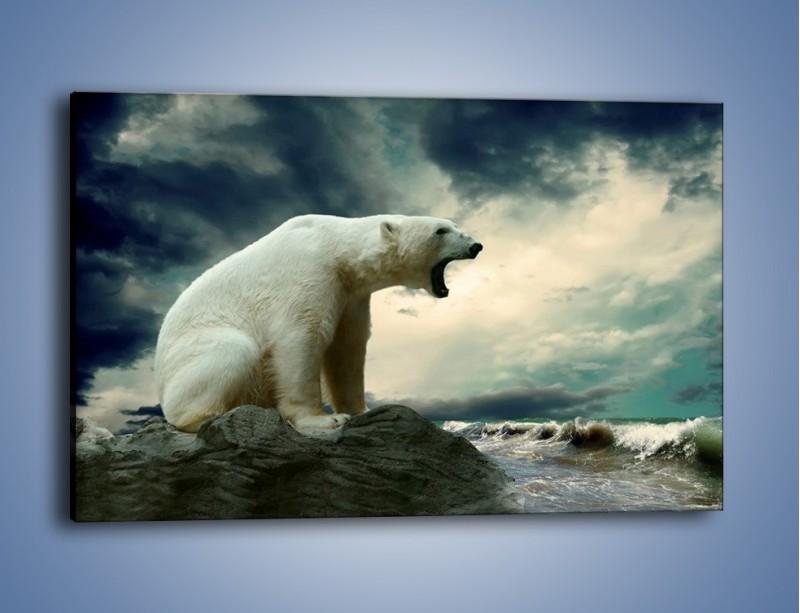 Obraz na płótnie – Donośny krzyk polarnego niedźwiedzia – jednoczęściowy prostokątny poziomy Z114