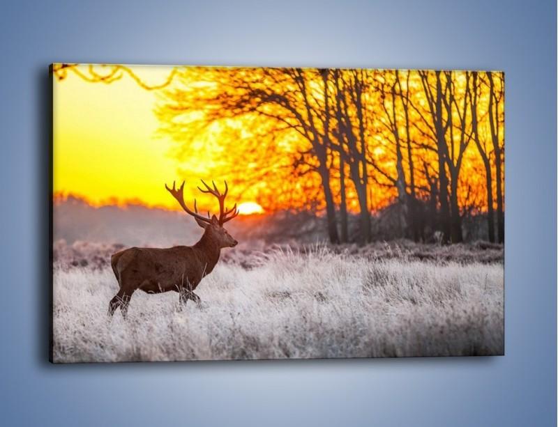 Obraz na płótnie – Jeleń o zachodzie słońca – jednoczęściowy prostokątny poziomy Z164