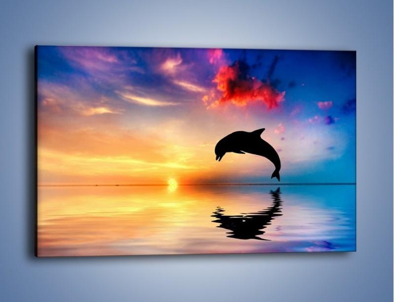 Obraz na płótnie – Delfin i jego odbicie – jednoczęściowy prostokątny poziomy Z268