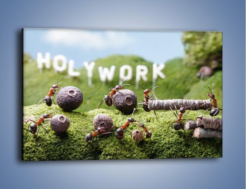 Obraz na płótnie – Ciężka praca mrówek – jednoczęściowy prostokątny poziomy Z308
