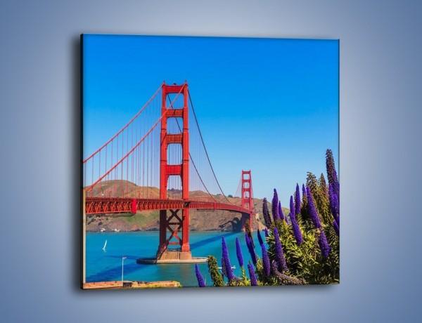 Obraz na płótnie – Golden Gate pod błękitnym niebem – jednoczęściowy kwadratowy AM644