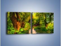 Obraz na płótnie – Drewniana kładka przez las – dwuczęściowy kwadratowy poziomy GR007