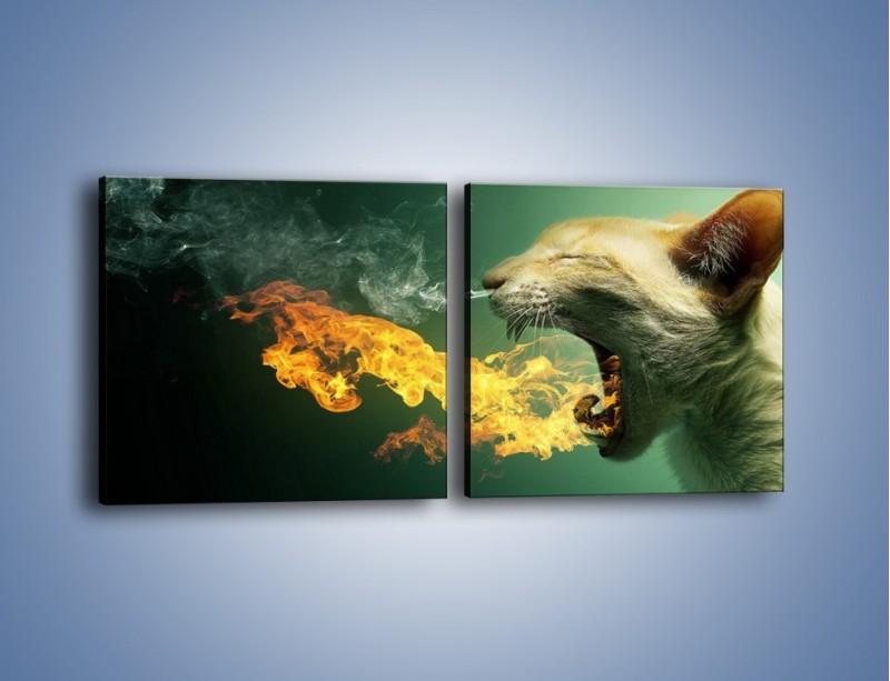 Obraz na płótnie – Kot z gorącym oddechem – dwuczęściowy kwadratowy poziomy GR180