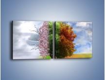 Obraz na płótnie – Cztery pory roku – dwuczęściowy kwadratowy poziomy GR333