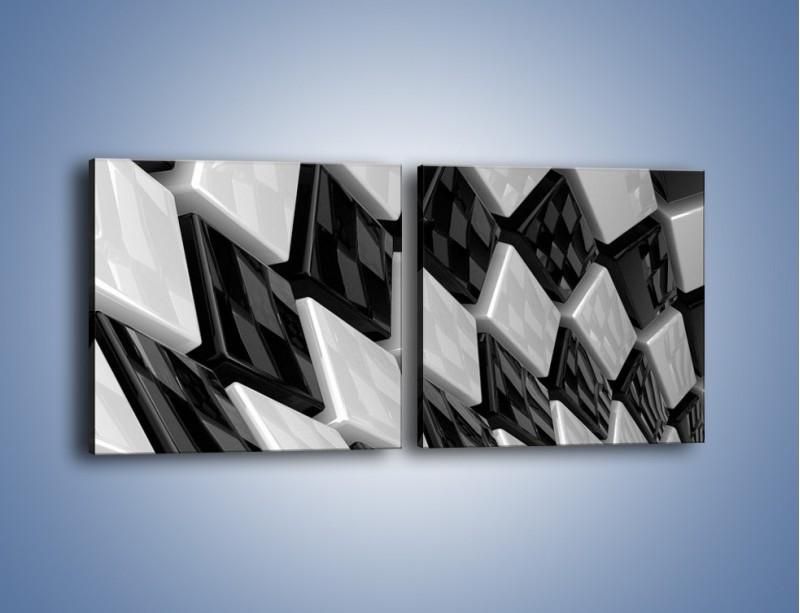 Obraz na płótnie – Czarne czy białe – dwuczęściowy kwadratowy poziomy GR425
