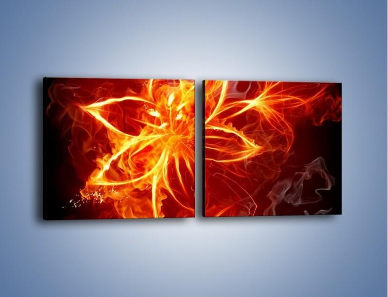 Obraz na płótnie – Spłonąć jak kwiat – dwuczęściowy kwadratowy poziomy GR527