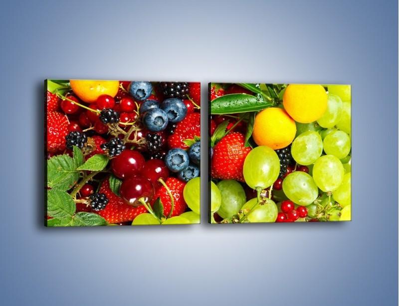 Obraz na płótnie – Wymieszane kolorowe owoce – dwuczęściowy kwadratowy poziomy JN037