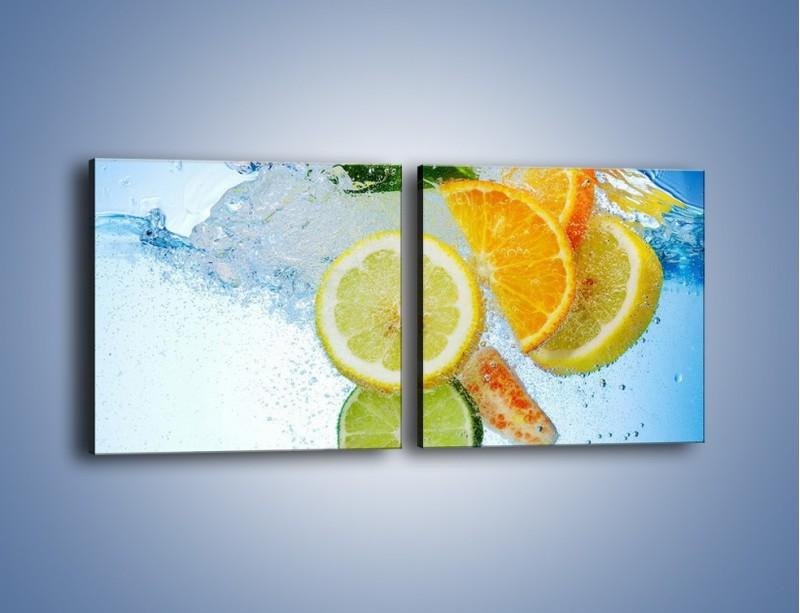 Obraz na płótnie – Zatopione plastry owoców – dwuczęściowy kwadratowy poziomy JN057