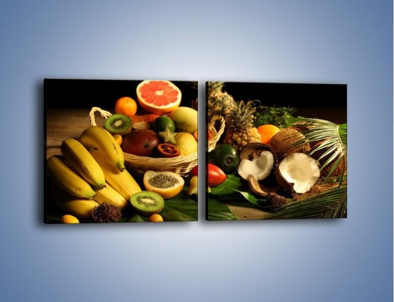 Obraz na płótnie – Kosz egzotycznych owoców – dwuczęściowy kwadratowy poziomy JN074