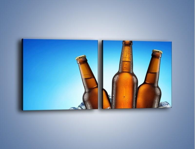 Obraz na płótnie – Szron na butelkach piwa – dwuczęściowy kwadratowy poziomy JN075
