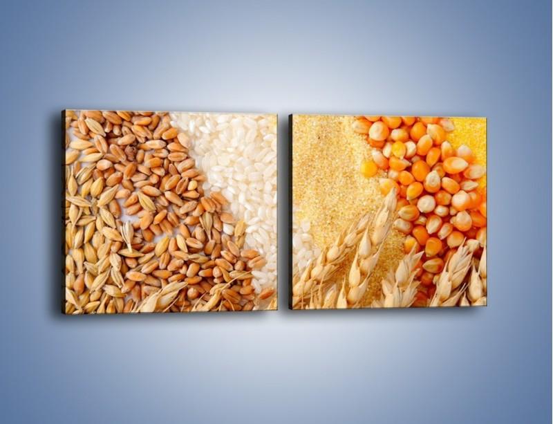 Obraz na płótnie – Ziarna pszenno-zbożowe – dwuczęściowy kwadratowy poziomy JN207