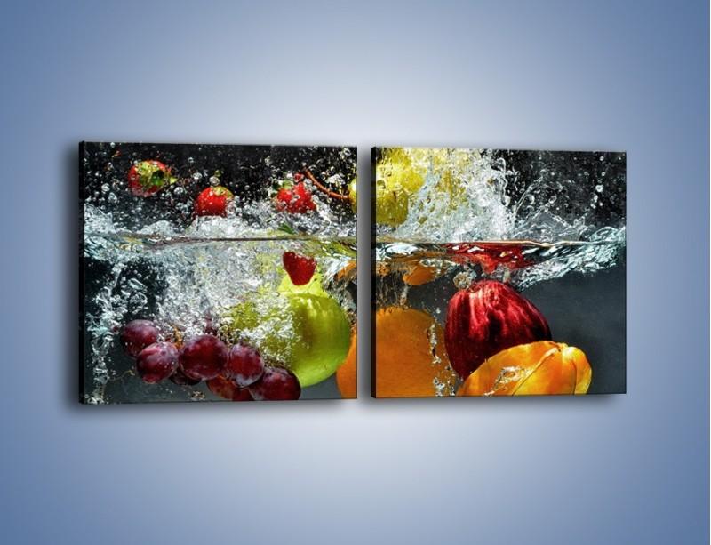 Obraz na płótnie – Głębokie owocowe zanurzenie – dwuczęściowy kwadratowy poziomy JN253