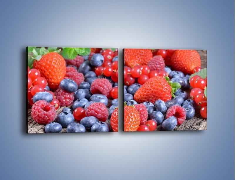 Obraz na płótnie – Owoce z działki – dwuczęściowy kwadratowy poziomy JN422