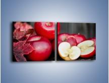 Obraz na płótnie – Czerwone jabłka późną jesienią – dwuczęściowy kwadratowy poziomy JN619