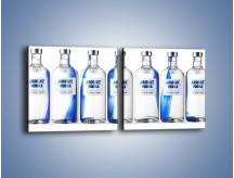 Obraz na płótnie – Czysta wódka w butelkach – dwuczęściowy kwadratowy poziomy JN748