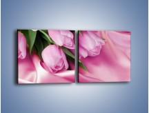 Obraz na płótnie – Atłas wśród tulipanów – dwuczęściowy kwadratowy poziomy K152