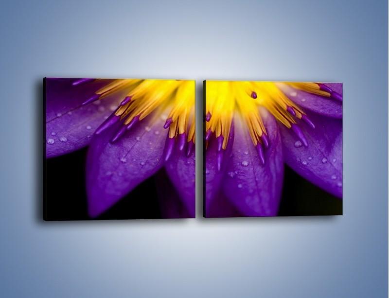 Obraz na płótnie – Baśniowy kwiat z tajemnicą – dwuczęściowy kwadratowy poziomy K189