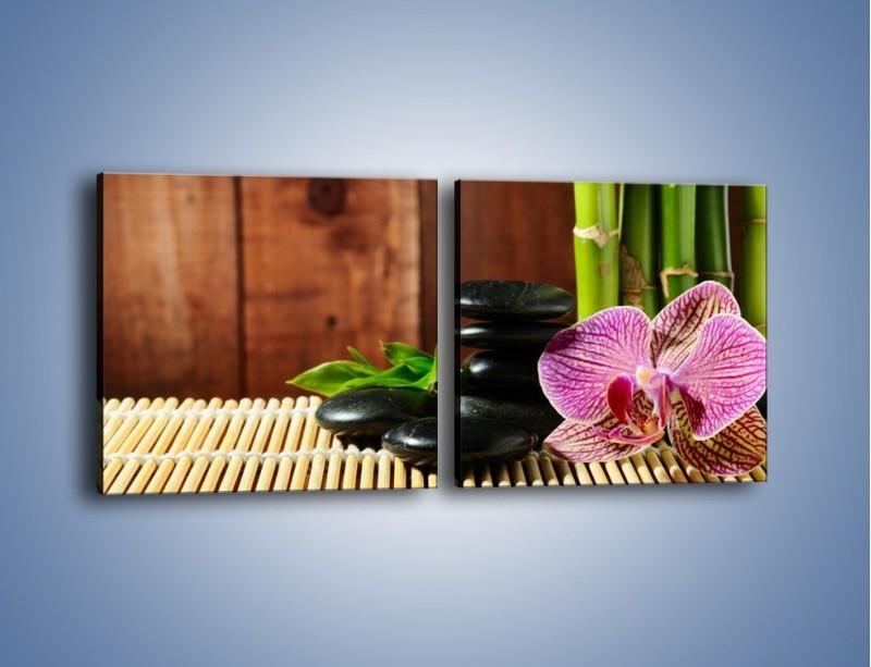 Obraz na płótnie – Bambus storczyk i kamienie – dwuczęściowy kwadratowy poziomy K279