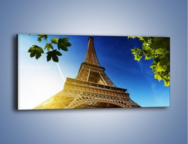 Obraz na płótnie – Wieża Eiffla w pełnej krasie – jednoczęściowy panoramiczny AM372