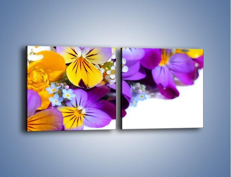 Obraz na płótnie – Ciepłe kolory w kwiatach – dwuczęściowy kwadratowy poziomy K442