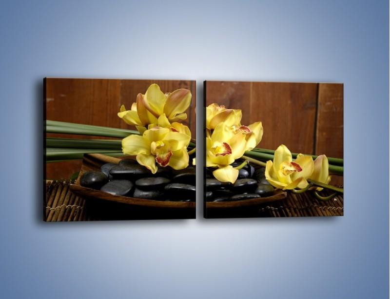 Obraz na płótnie – Kwiaty na drewnianym naczyniu – dwuczęściowy kwadratowy poziomy K575