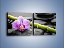 Obraz na płótnie – Bambus czy storczyk – dwuczęściowy kwadratowy poziomy K686