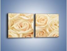 Obraz na płótnie – Bukiet herbacianych róż – dwuczęściowy kwadratowy poziomy K710