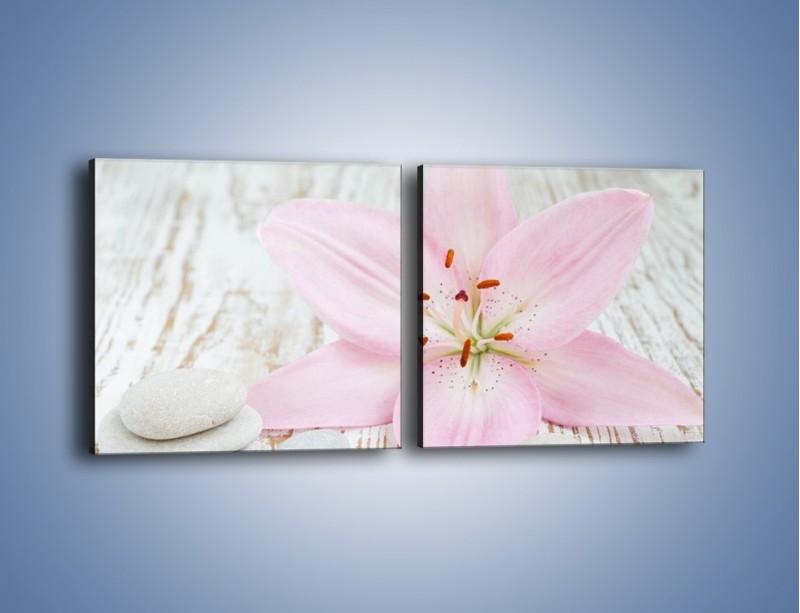 Obraz na płótnie – Cała słodycz w lilii – dwuczęściowy kwadratowy poziomy K727
