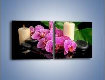 Obraz na płótnie – Ciepło ogień i kwiaty – dwuczęściowy kwadratowy poziomy K881