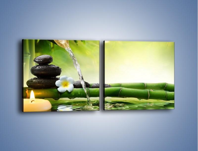 Obraz na płótnie – Bambus i źródło wody – dwuczęściowy kwadratowy poziomy K930