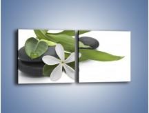 Obraz na płótnie – Artystyczna kompozycja z kwiatem – dwuczęściowy kwadratowy poziomy K968