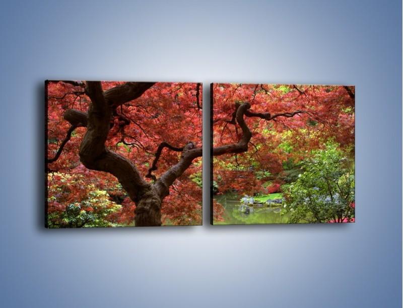 Obraz na płótnie – Pejzaż jak w raju – dwuczęściowy kwadratowy poziomy KN069