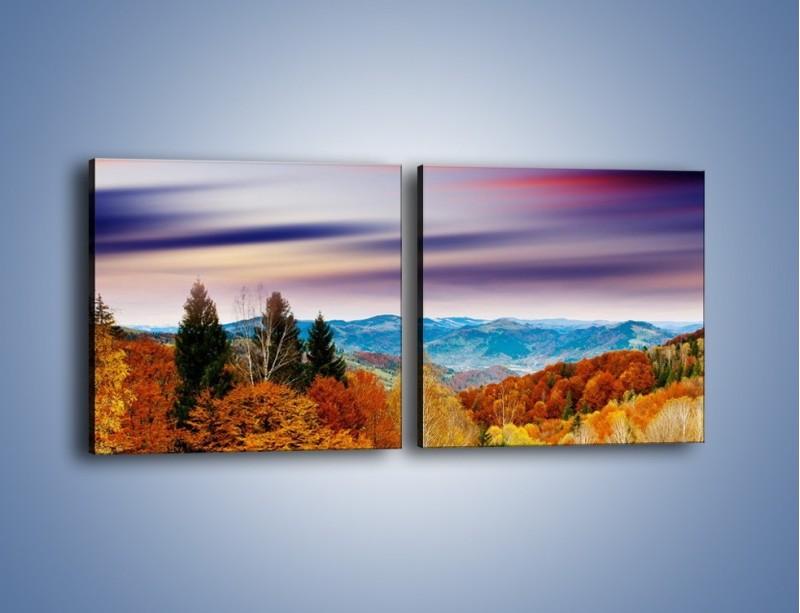 Obraz na płótnie – Drzewa w kolorach jesieni – dwuczęściowy kwadratowy poziomy KN099