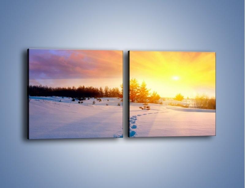 Obraz na płótnie – Ślady na śnieżnym puchu – dwuczęściowy kwadratowy poziomy KN1015