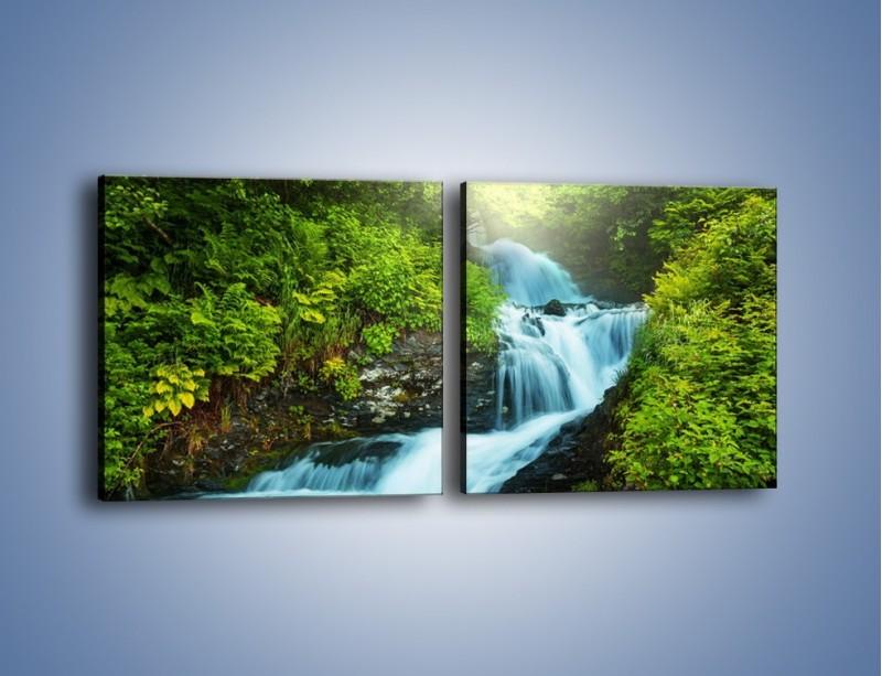 Obraz na płótnie – Spływ wodny i zieleń – dwuczęściowy kwadratowy poziomy KN1069