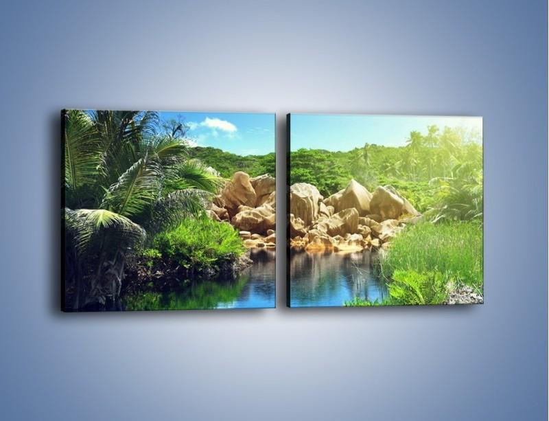 Obraz na płótnie – Bogata roślinność nad wodą – dwuczęściowy kwadratowy poziomy KN1082A