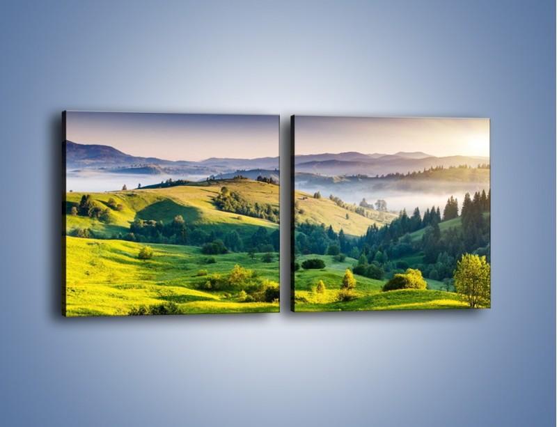 Obraz na płótnie – Tylko zieleń i góry – dwuczęściowy kwadratowy poziomy KN1084