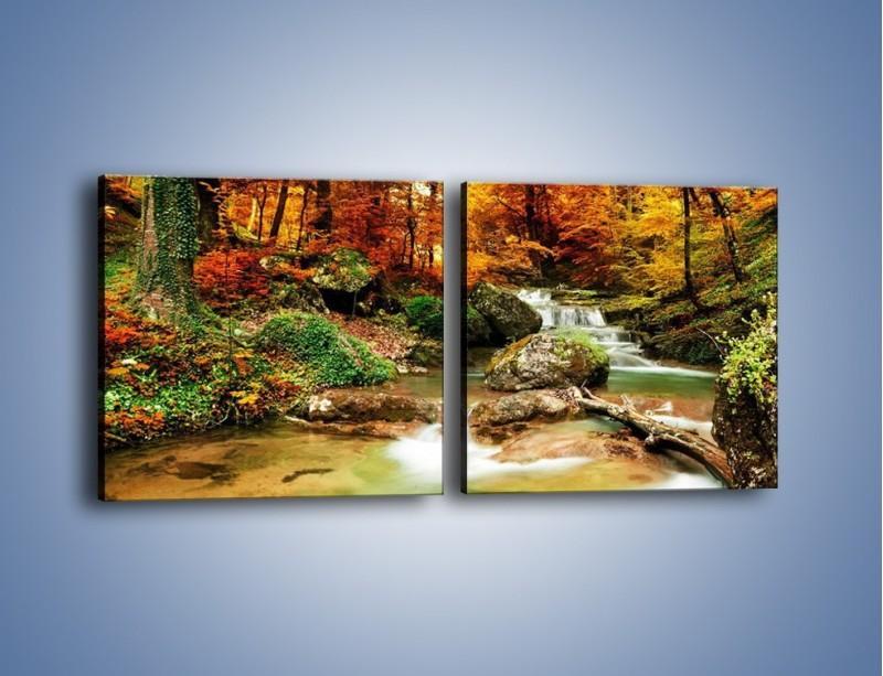 Obraz na płótnie – Jesienne kolory w lesie – dwuczęściowy kwadratowy poziomy KN1094A