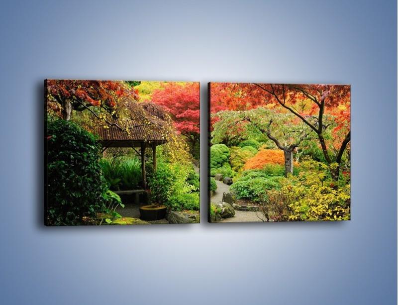 Obraz na płótnie – Alejka między kolorowymi drzewami – dwuczęściowy kwadratowy poziomy KN1113