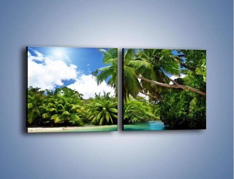 Obraz na płótnie – Rozłożone palmy i woda – dwuczęściowy kwadratowy poziomy KN1168A