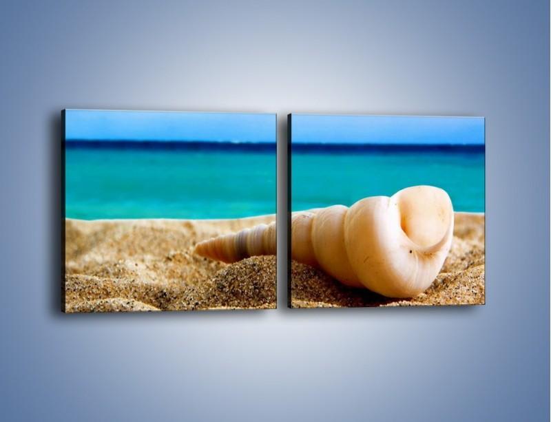 Obraz na płótnie – Czy uda się zobaczyć ślimaka – dwuczęściowy kwadratowy poziomy KN1210A
