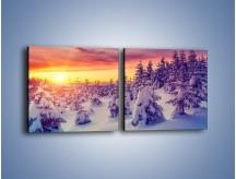 Obraz na płótnie – Choinki w śnieżnej szacie – dwuczęściowy kwadratowy poziomy KN1220A