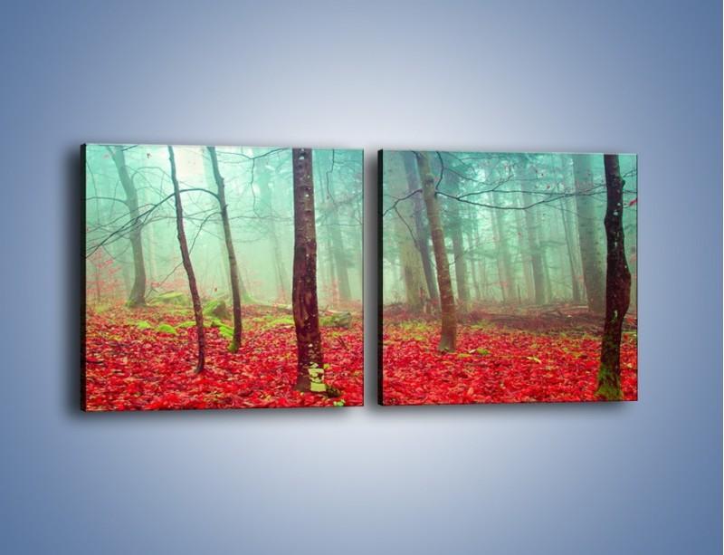 Obraz na płótnie – Drzewka na czerwonym dywanie – dwuczęściowy kwadratowy poziomy KN1222A