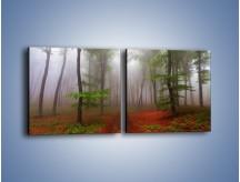 Obraz na płótnie – Budzący się lasek – dwuczęściowy kwadratowy poziomy KN1285A