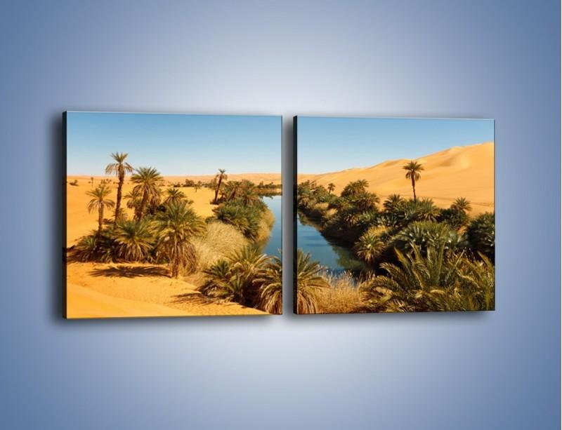 Obraz na płótnie – Woda woda na pustyni – dwuczęściowy kwadratowy poziomy KN1294A