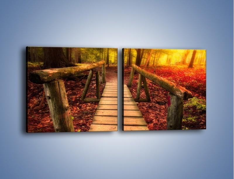 Obraz na płótnie – Krótkie przejście przez las – dwuczęściowy kwadratowy poziomy KN1330A