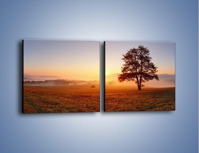 Obraz na płótnie – Krajobraz utopiony we mgle – dwuczęściowy kwadratowy poziomy KN1331A