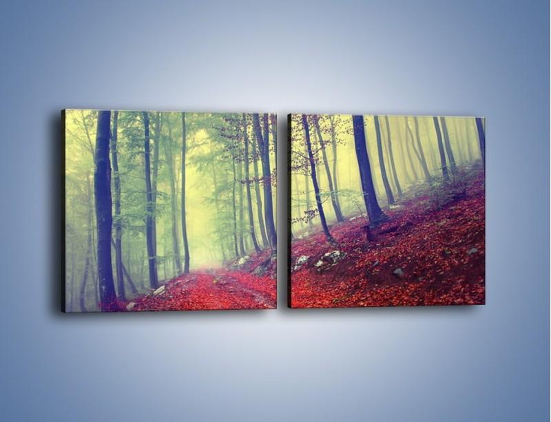 Obraz na płótnie – Bardzo wąską ścieżką leśną – dwuczęściowy kwadratowy poziomy KN1335A